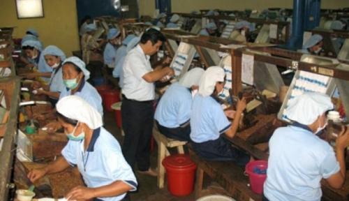 Foto Pemerintah Kejar Rp149,8 Triliun dari Kenaikan Tarif Cukai Tembakau