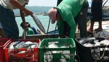Foto Dinas Kelautan Sumut Berikan Pelatihan Pengelolaan Ikan dan Sabun Cair di Lapas