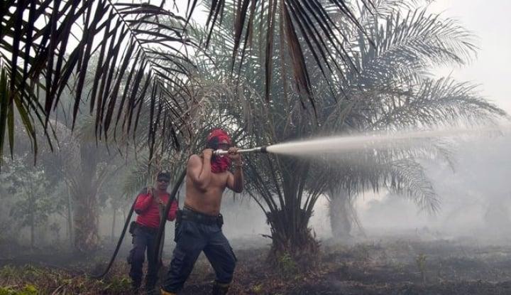 Foto Berita APRIL Siap Lanjutkan Program Desa Bebas Api