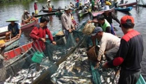 Foto Cuaca Ekstrem, Harga Ikan Melonjak Tinggi
