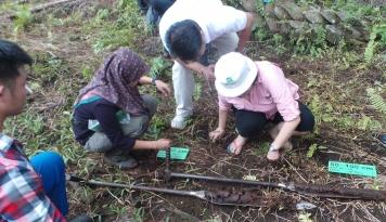 Foto Pemerintah Siapkan 12,7 Juta Hektare Hutan Masyarakat