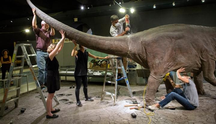 Ilmuwan Kaget saat Temukan Fosil 66 Juta Tahun, Diduga Telur Raksasa Mosasaurus