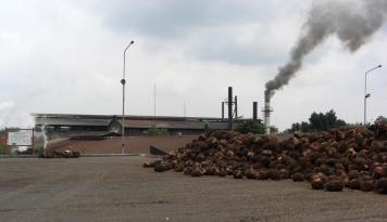Foto PTPN dan Unilever Sepakat Percepat Produksi Minyak Sawit Berkelanjutan di Indonesia