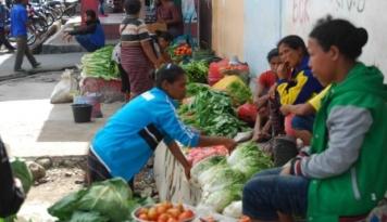 Foto Bupati Sambas Dorong Masyarakat Giat Tanam Sayur