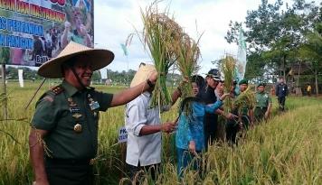 Foto Pemkab Minahasa Cetak Ratusan Hektare Sawah