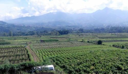 Foto Mendes Jamin Tahun Depan Dana Desa Akan Dinaikkan