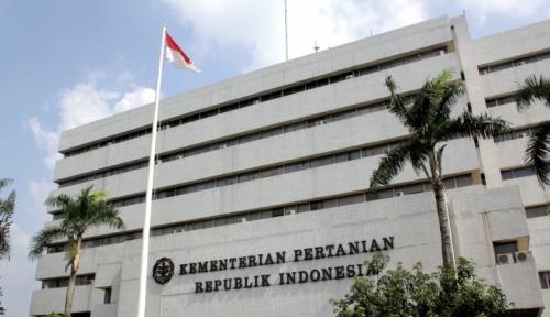Foto Usut Korupsi Jagung, Pejabat Kementan Harus Diperiksa