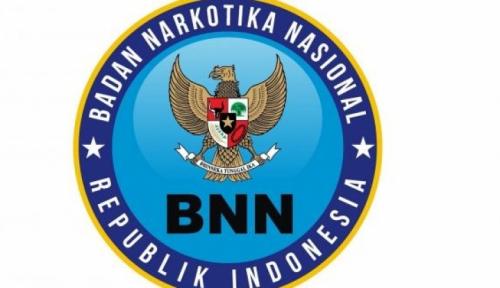 Foto BNN Temukan 350 Ribu Orang Pengguna dan Terdampak Narkoba di Sumut