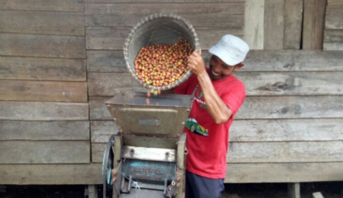 Foto Kopi Sumsel Akan Dipromosikan di Festival Sriwijaya