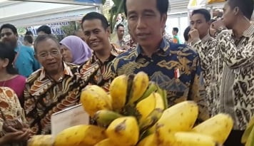Foto Presiden Jokowi Luncurkan Program Bantuan Pangan Nontunai