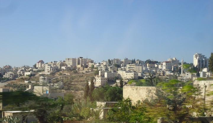 Meski Musuhan, Palestina Berbaik Hati Bantu Israel Padamkan Kebakaran - Warta Ekonomi
