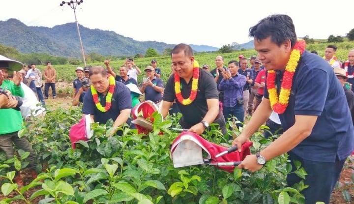 Foto Berita Awali 2017, Mitra Kerinci Rayakan Pencapaian 2016 Lewat Parade Budaya Wiwitan Petik