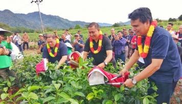 Foto Awali 2017, Mitra Kerinci Rayakan Pencapaian 2016 Lewat Parade Budaya Wiwitan Petik