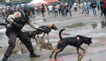Foto Polisi Buru Pemodal Penambang Emas Ilegal