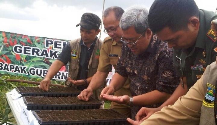 Foto Berita Tak Mau Operasi Pasar, Aher Pilih Lakukan Aksi Tanam Cabai