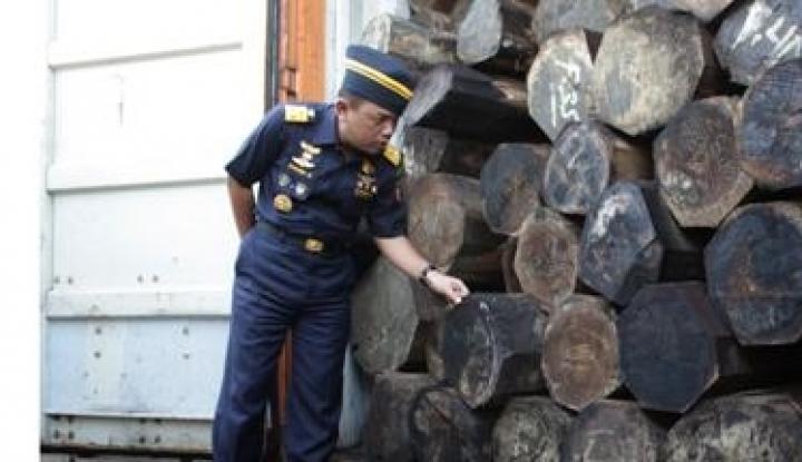 Foto Berita KPK: Pencurian Kayu Rugikan Negara Triliunan Rupiah