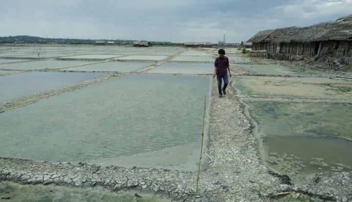 Foto Berita Ternyata, Sudah 27 Tahun Indonesia Mengimpor Garam
