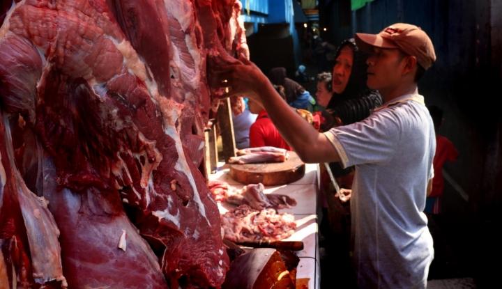 Foto Berita Sulut Antisipasi Peningkatan Kebutuhan Daging Sapi