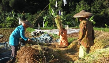 Foto Masyarakat Bali Diminta Kembangkan Pertanian Organik