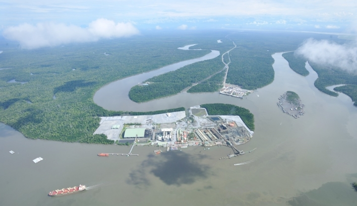 Freeport: PR Besar di Balik Wacana Divestasi - Warta Ekonomi