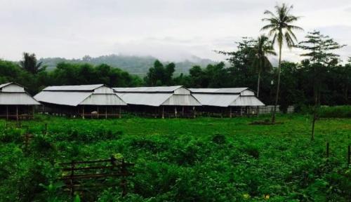 Gandeng Kadin, Danamart Siap Kucurkan Pinjaman di Sektor Perkebunan dan Pertambangan
