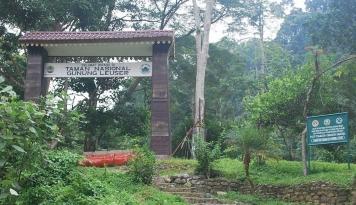 Foto Kawasan Leuser Terancam Rusak, Konsorsium LSM Surati Unesco