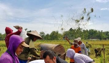 Foto ADB Biayai Pengembangan Teknologi Pertanian Indonesia