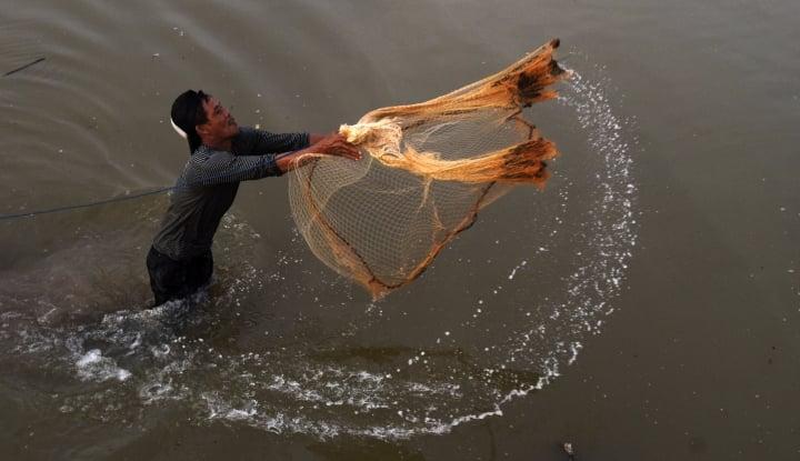 Foto Berita Daerah Kaya Perairan, Tapi PAD Sektor Perikanannya Cuma Rp20 Juta