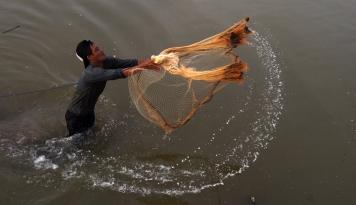 Foto Dinas Perikanan Karawang Dorong Budidaya Ikan