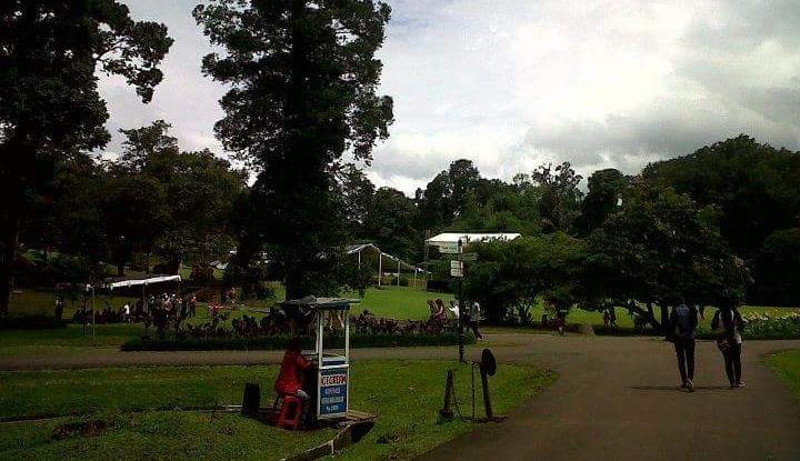 Foto Berita Jokowi Kumpulkan Kicau Mania di Kebun Raya Bogor