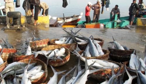 Foto Harga Ikan dan Cabai Di Kotabaru Melambung Pascalebaran