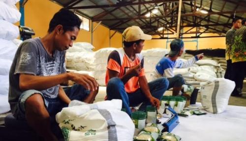Foto PPI Maluku Miliki Stok Gula Pasir 50 Ton