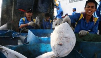 Foto Hasil Tangkapan Berlimpah, Nelayan Lebak Girang