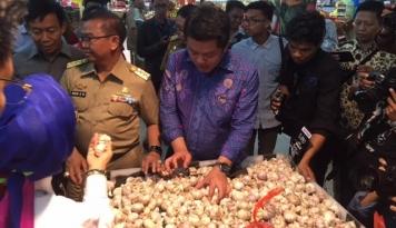 Foto KPPU Catat, 97 Persen Bawang Putih di Indonesia Diimpor dari China