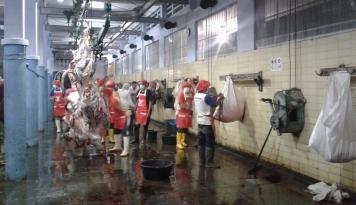 Foto MUI Apresiasi Mendag Revisi Permen Halal Daging Impor