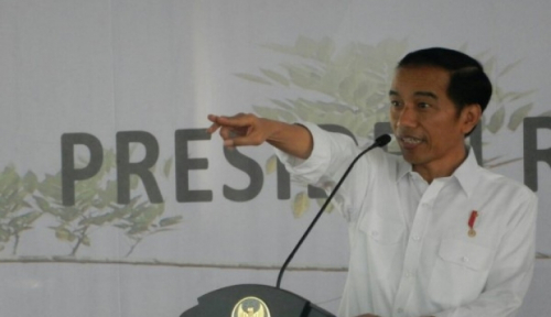 Foto Presiden Jokowi Monitor Perkembangan Tol Pekabaru-Dumai