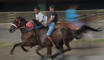 Foto Lomba Pacuan Kuda Akan Meriahkan Lebaran Ketupat di Gorontalo