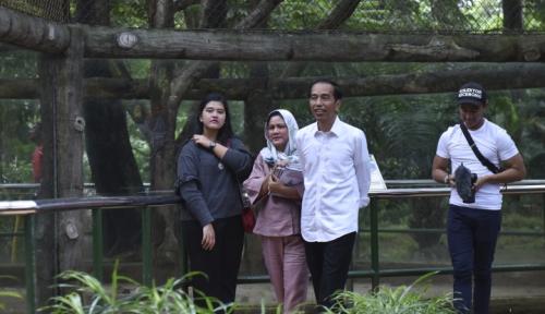 Foto Ditantang Jokowi, Kaesang Luncurkan Aplikasi untuk Ibu-Ibu Rumah Tangga