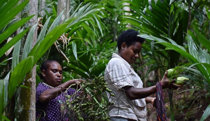 Foto Berita KPPU Medan Segera Buat Struktur untuk Lindungi Usaha Kecil dan Perkebunan