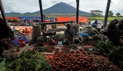 Foto Daya Beli Menurun, Pedagang Sayur Babel Merugi