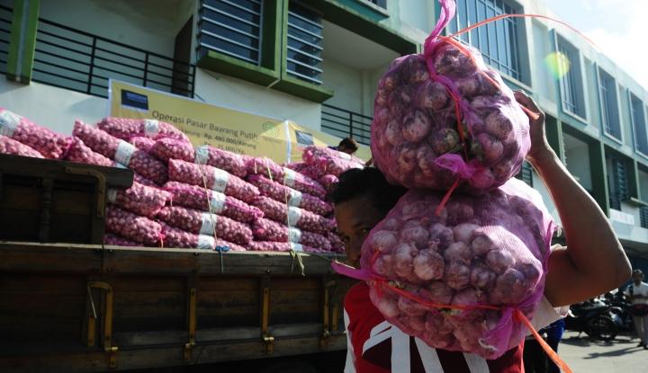 Foto Berita DPR Dorong Pemerintah Lakukan Operasi Pasar Bawang Putih