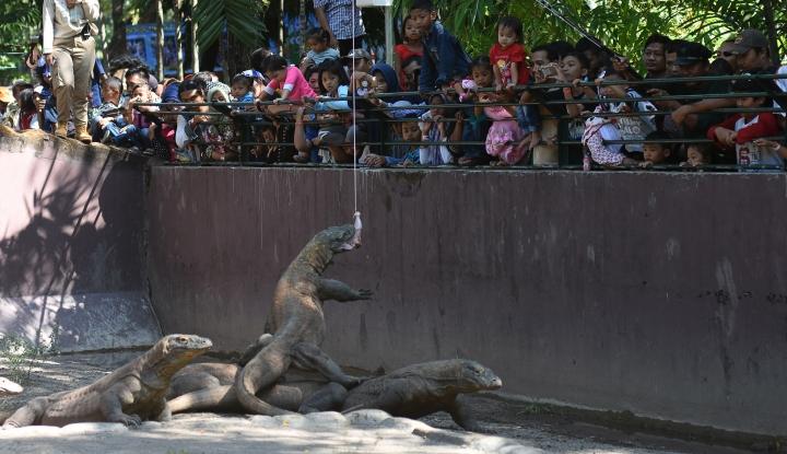 Foto Berita Kalimantan Dua Tahun Lagi Bakal Punya Kebun Raya Terbesar
