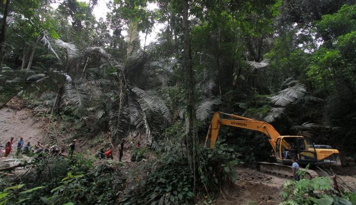 Foto Berita Ibu Kota Diwacanakan Pindah,  Rumah.com: Awas Ada Spekulan Tanah!