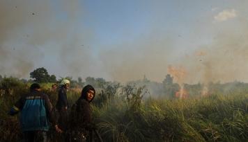 Foto Rewetting Itu Sia-sia, Bangun Pemahaman Cegah Kebakaran Lahan Gambut!