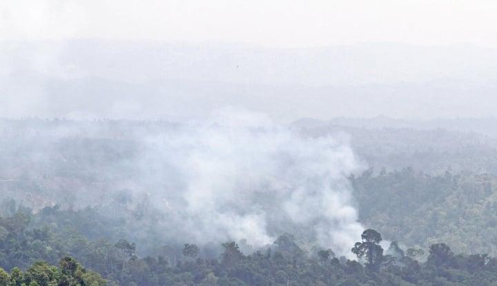 Demi Atasi Kebakaran Hutan, Polisi Sampai Turunkan Penyidik Khusus - Warta Ekonomi