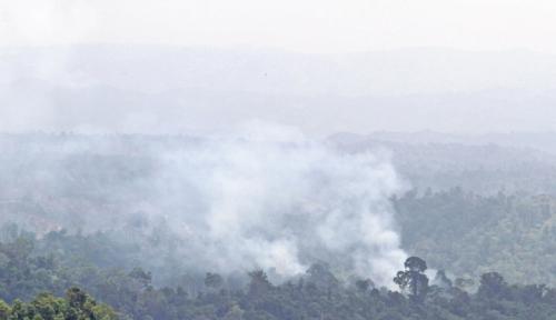 Foto 103 Titik Panas Ditemukan di Pekanbaru