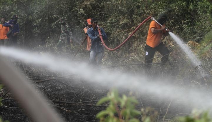 Waspada, Kebakaran Hutan Masih Terus Terjadi Hingga Oktober 2019 - Warta Ekonomi