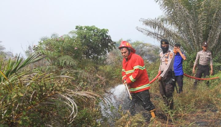 Riau Tolak Bantuan dari Anies, DPD Bereaksi - Warta Ekonomi