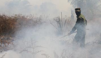 Foto Apindo: Kabut Asap Ganggu Aktivitas Ekonomi Kalbar