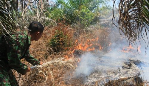 Foto Wali Kota Palangkaraya Ingatkan Warga untuk Tidak Membakar Lahan